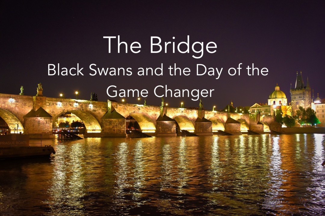 Black Swans and the Day of the Gamechanger
