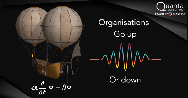 The Organisation as a Probability Wave